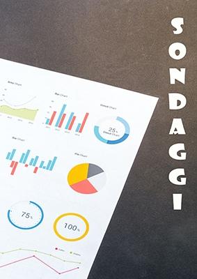 l'immagine contiene dei grafici a torta o ad istogramma con la parola sondaggi scritta in verticale sulla destra in bianco.